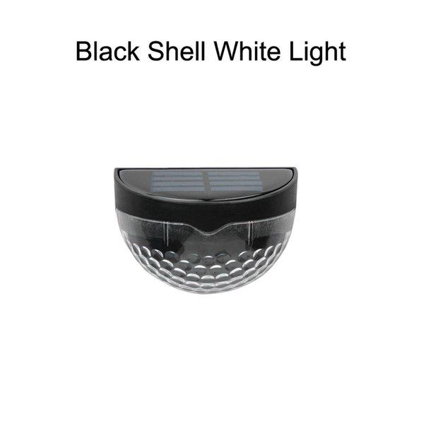 Black Shell White Light