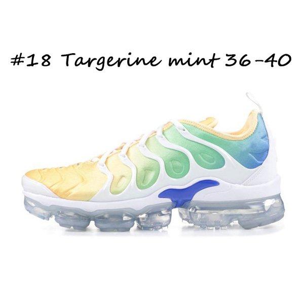 #18 Targerine mint 36-40