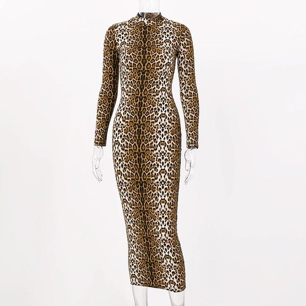 Leopard longo
