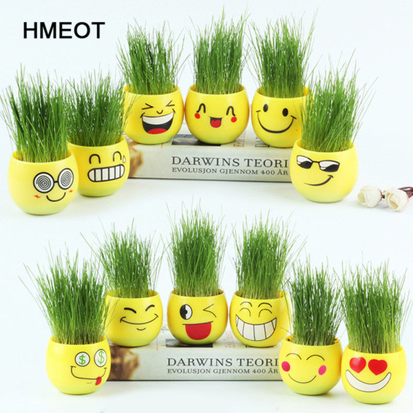 Creative office potted long grass head doll expression pack DIY micro landscape mini grass planting Home decoration accessories