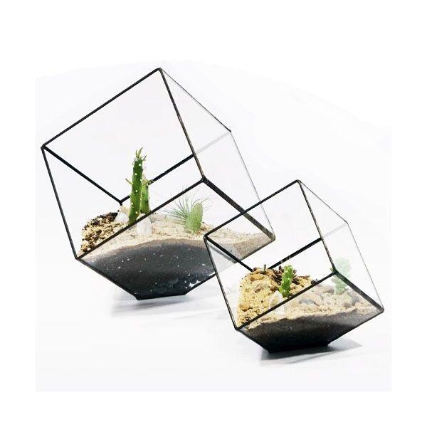 Modern Eğimli Küp Etli Teraryum Yaratıcı Geometrik Fern Moss Cam Ekici Wardian Durumda Saksı Konteyner Siyah Altın