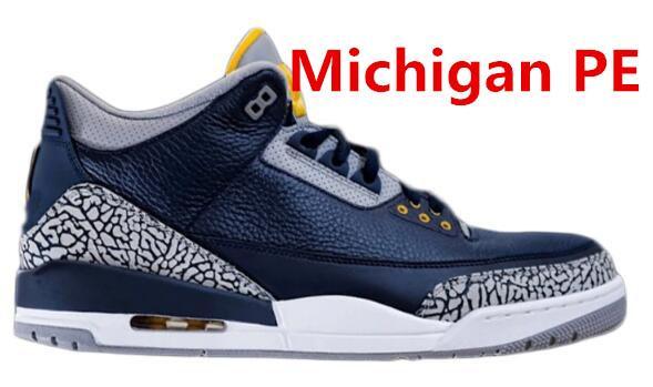 Michigan PE