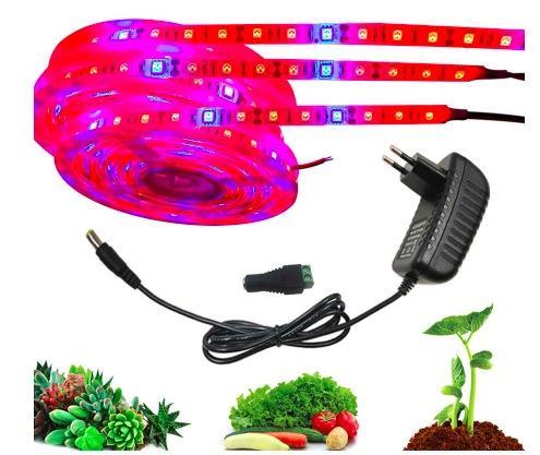 luci coltiva la pianta 5m impermeabile lampada fito Full Spectrum striscia Fiore LED rosso blu 4: 1 per Serra Adattatore idroponico + Power, con adattatore