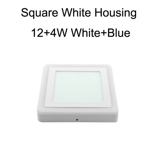 Square White Housing 12+4W White+Blue