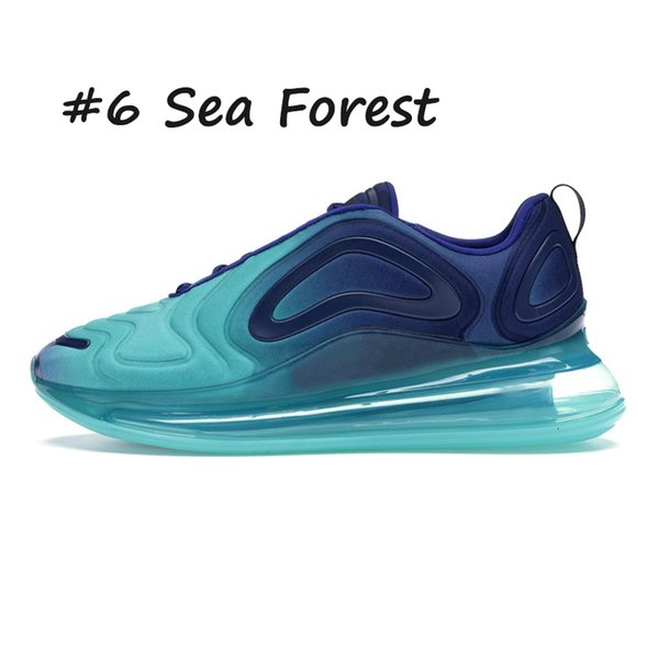 6 Sea Forest