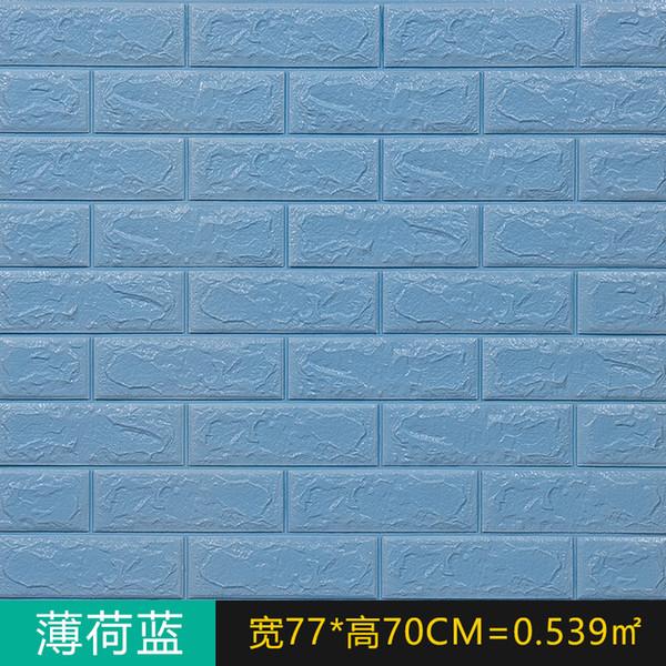 70 * 30cm-gök mavisi