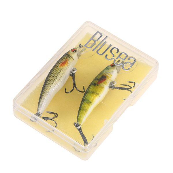 Blusea 2PCS Fish Lures Set Lures Bionic Hard Fishing Bait Set Lifelike Minnow Swimbait Kit Fishing Tackle Pesca Blusea 2PCS