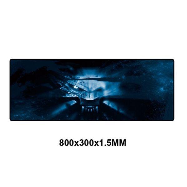 WS-009-80x30
