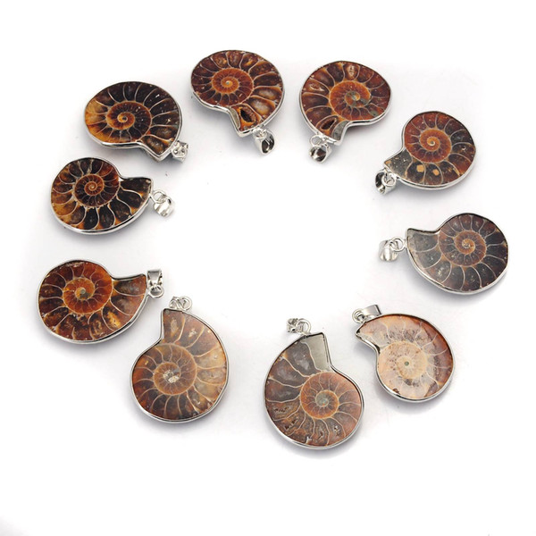 Natural Ammonite Pendant Fossil Charm with Silver Plated Bail, Fossil Pendants Charms Fashion Jewelry Popular Simple Style
