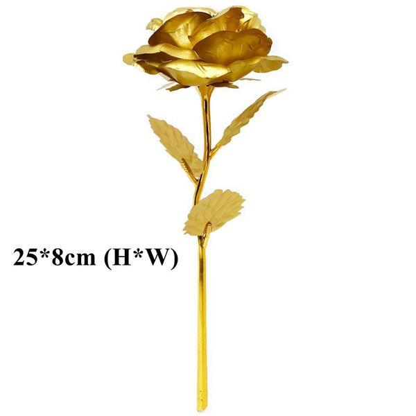 Gold (25 * 8 cm)