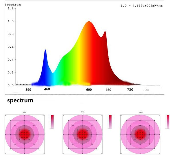2020 Top 120w Smd Patch Mode Quantum Board Led Plant Growth Lamp Can Replace Sunlight Hps Mh Socket Has Eu Au Uk Us 1000 Watt Led Grow Lights