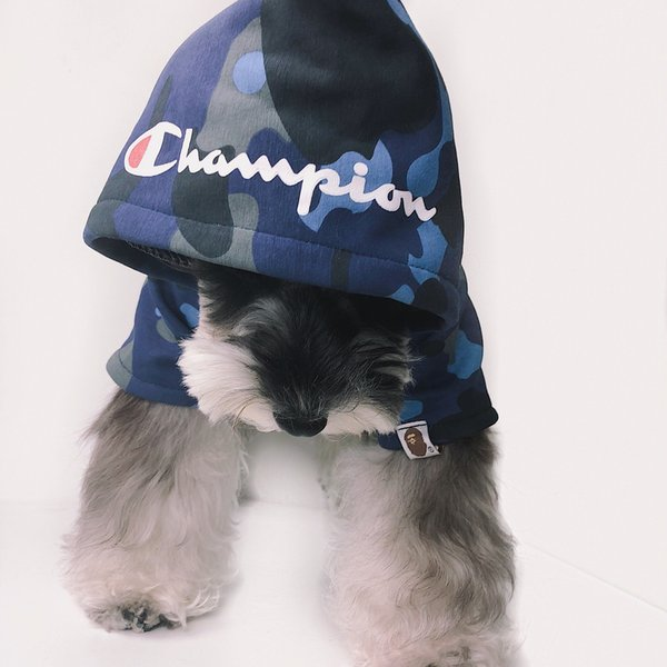 C Letter Dog Clothes Designer Brand Pet Dog Hoodies Fashion Teddy Puppy Schnauzer Dog Apparel Pet Outwear Clothing GGA2117