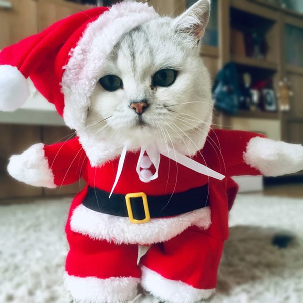 Winter Christmas Pet Cat Costumes Outfits For Funny Cat Kitty Santa Dogs  Clothing Small Clothes Year Cats New Xmas Kitten Claus Cat Costumes For  Kids
