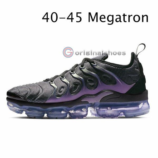 8- Megatron