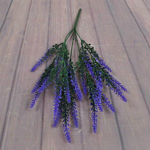 Lavande violet
