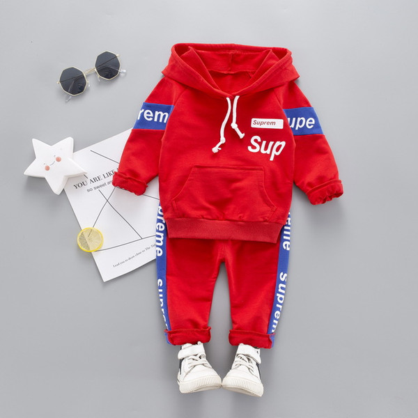 Spring Autumn Toddler Tracksuit Baby Clothing Sets Children Boys Girls Clothes Kids Cotton Hoodies Pants 2 Pcs/sets WD951112