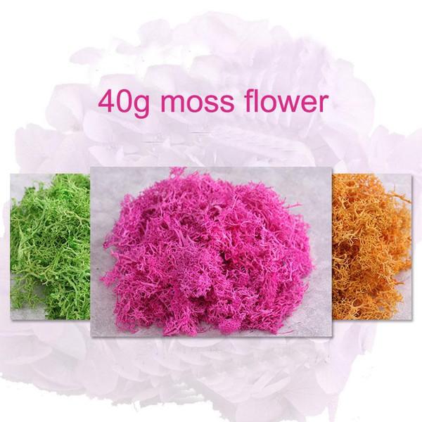 Toptan-40g Renkli Moss Asla solmayan Sigorta Ebedi Çiçekler Ölümsüz çiçekler DIY Çiçek malzemeleri Mikroskobik bonsai