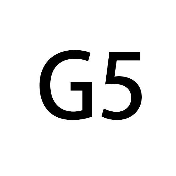 شريط اسود + اسود G الإبزيم 243