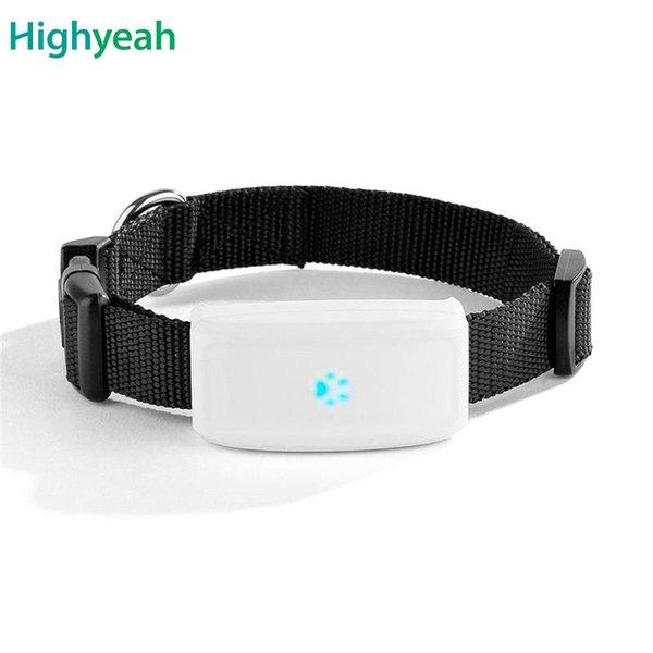 cane gatto tk911 gps outdoor tracciamento tkstar pet collare impermeabile Tracker localizzatore WIFI hot-spot app gratuita di monitoraggio