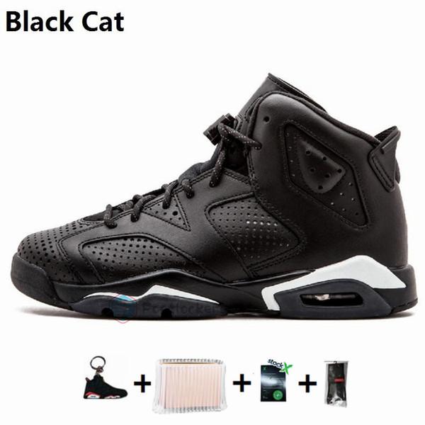 16-Black Cat