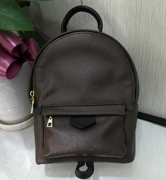 top popular 2019 brand fashion luxury designer bags zipper Classic Presbyterian bag Women's Palm Springs Punk style leather Mini designer backpack 2019