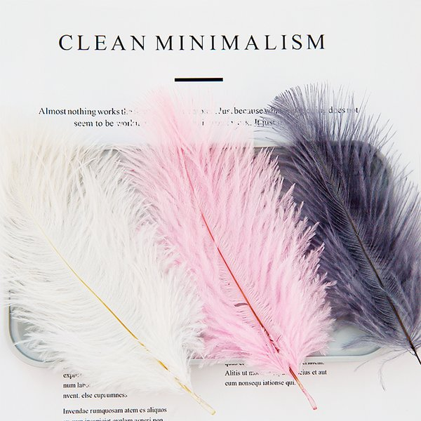 High Quality White Natural Ostrich Feathers ins Photography Accessories DIY Decoration for Bracelet Ring Jewelry Lipstick Makeup