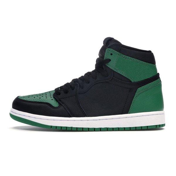 Pino verde 36-45