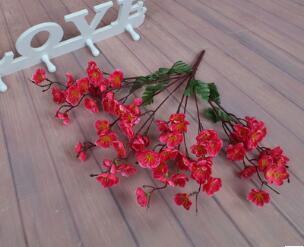 Роза красная