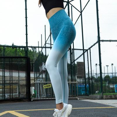 708cd5e670c0ab Women Sports Gym Yoga Pants Compression Tights OMBRE Seamless Pants  Stretchy High Waist Run Fitness Leggings