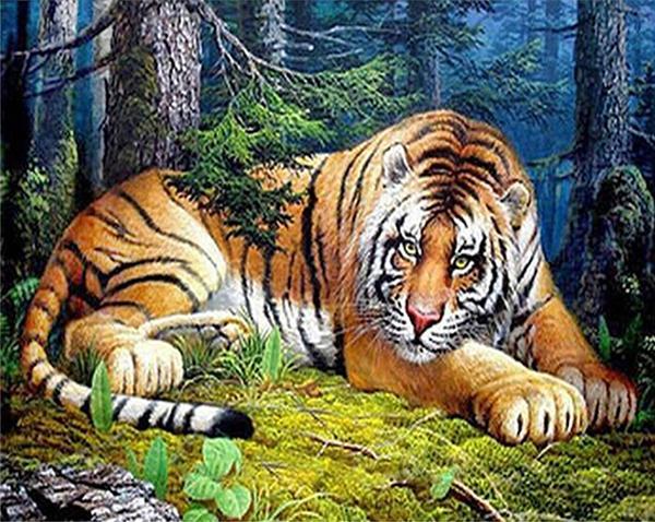 5D Diamant broderie animal tigre bricolage diamant peinture point de croix kit résine plein roundsquare diamant mosaïque décor à la maison cadeau BB0314