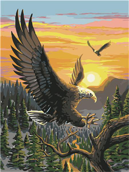 16x20 inches Eagle Sunset Homing Forest Scenery DIY Paint By Numbers Kits On Canvas Art Acrylic Oil Painting