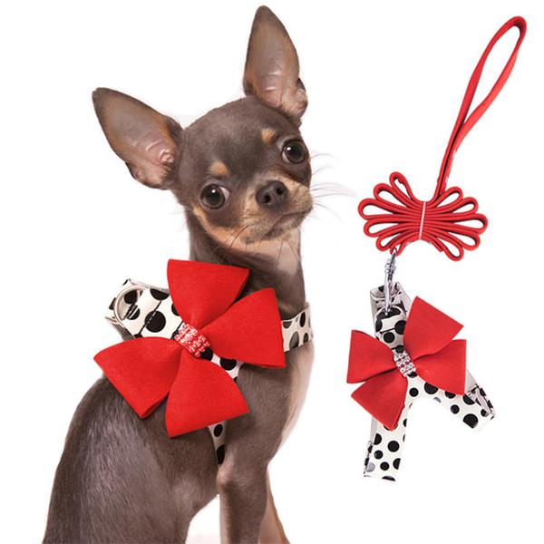 Dog puppy collar Chihuahua toy breed  Pink Polka Dots /& Pretty Polka Dot Bow