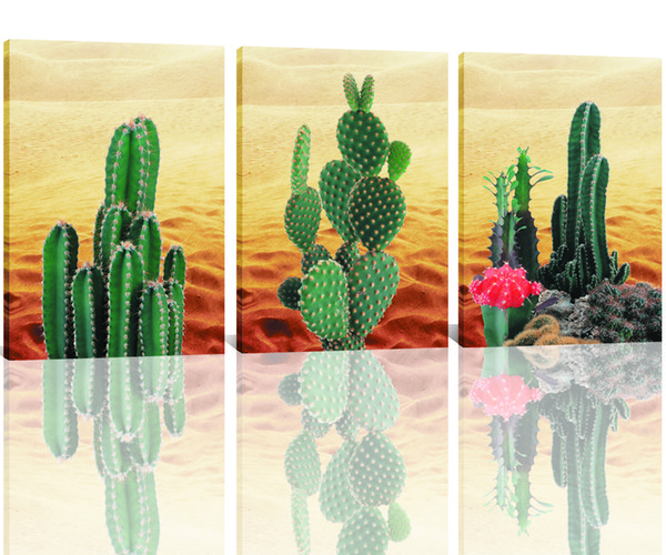 Cactus in The Desert Plants Landscape Picture Canvas Wall Artwork for Modern Artwork Wall Painting Home Decor Unframed
