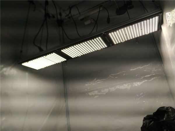 Diy 300w Led Quantum Board 3 X Lm301b Kit Full Spectrum Dimmable Led Grow Light Indoor Plant Growing Light Mw Hlg 320h 48b Driver Lights For Growing