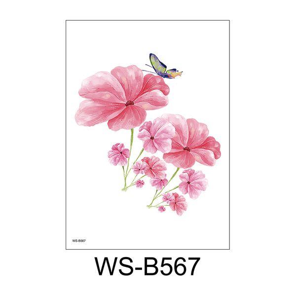 WS-B567