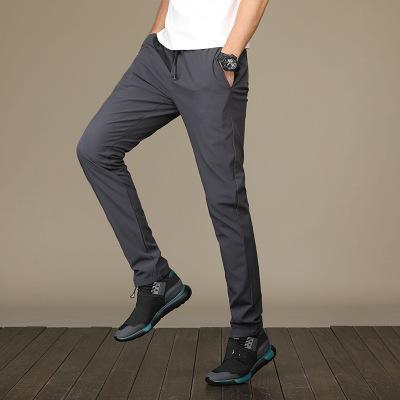 Hot frete grátis Hot boa qualidade 2.019 calças calças finas calças masculinas casuais Verão Marca Masculino pés pequenos Calças Calças