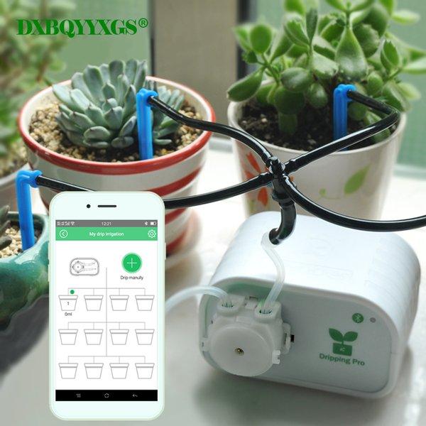 Controllo del telefono cellulare Dispositivo di irrigazione automatica da giardino intelligente Pianta grassa Impianto di irrigazione a goccia