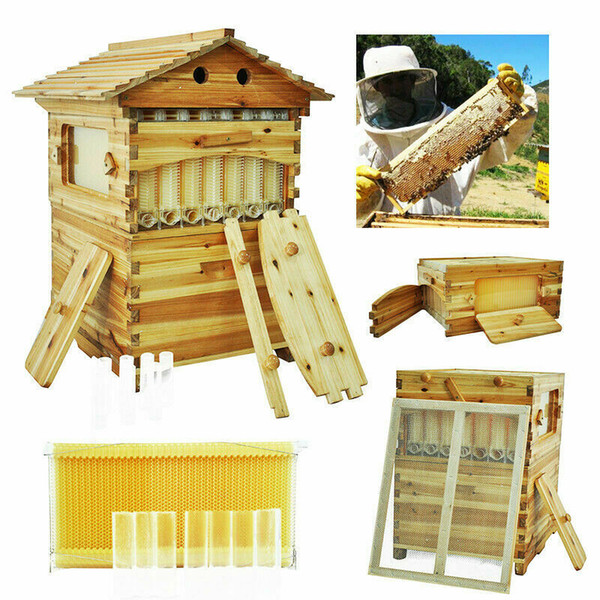 7x modelos de luxo da abelha do mel de abelha favo de colmeia livre fluxo em forma de moldura de madeira de cedro