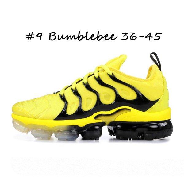 #9 Bumblebee 36-45
