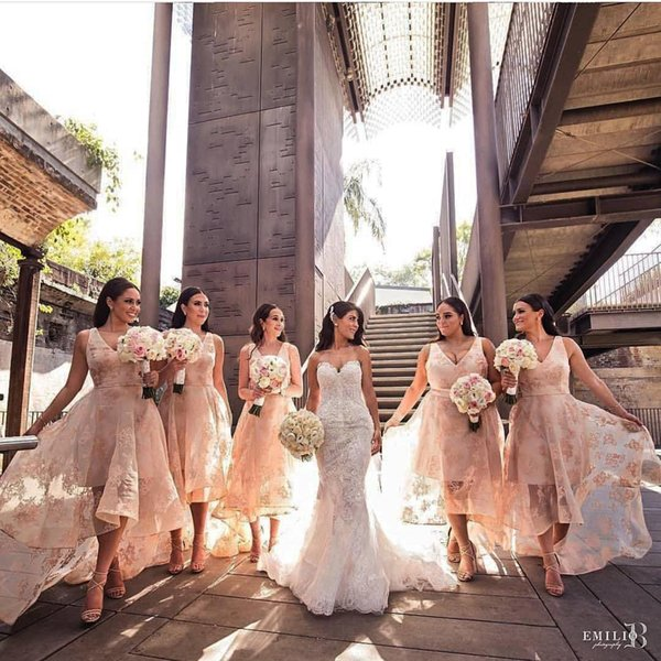 Blush Pink High Low Style Bridesmaids Dresses Asymmetrical Sexy V Neck Lace Applique Sleeveless Front Short Back Long Formal Prom Party Gown