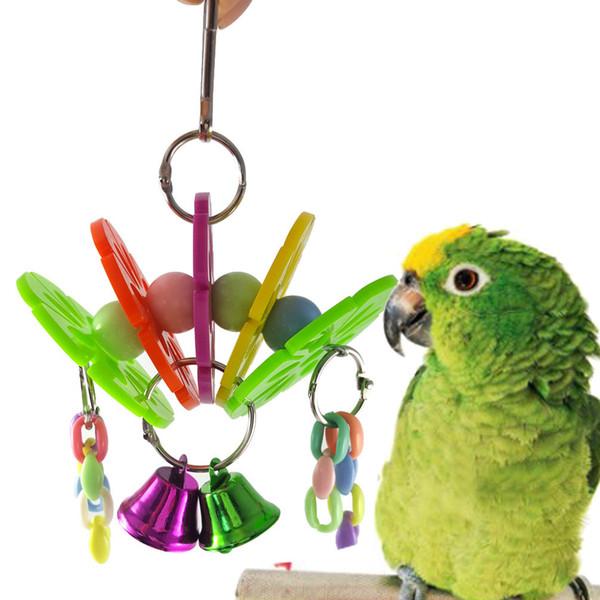 Il pappagallo medio e di piccola dimensione rosicchia i capelli del gruppo del ponte dell'arco del fiore del sole