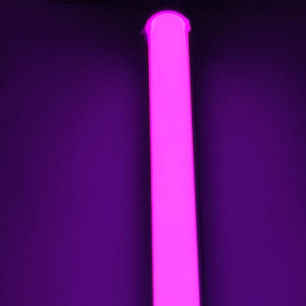 핑크 - 퍼플