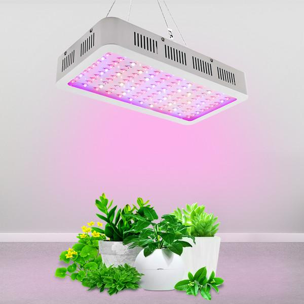1000w LED Grow Light Double Chips Full Spectrum con UVIR per serra di piante da interno Veg e fiori