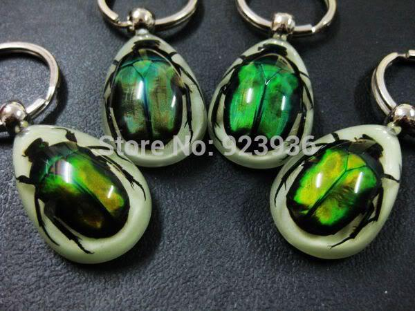 jewelry gift basket FREE SHIPPING 16 PCS REAL GREEN BEETLE GLOW LUCITE KEYRING KEYCHAIN JEWELRY TAXIDERMY GIFT
