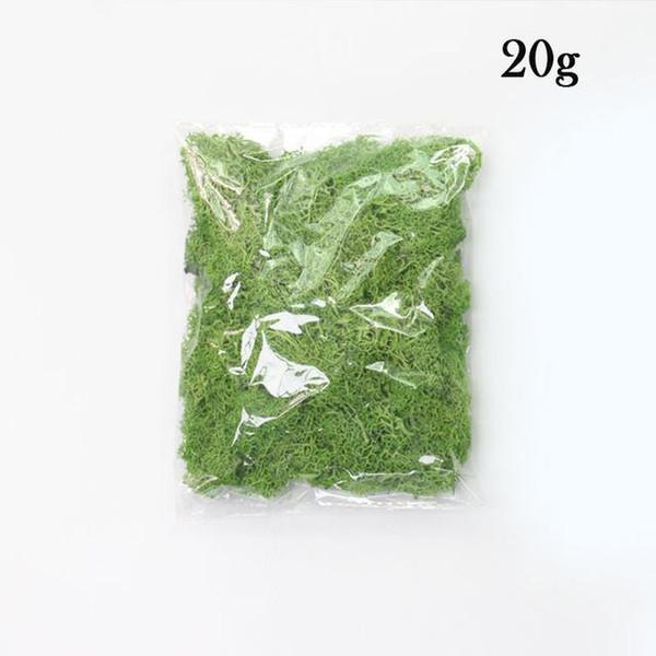 Eine grüne