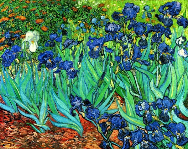 Van Gogh Irises Repro High Quality Handpainted & HD Print Impressionist Art Oil Painting On Canvas Wall Art Home Office Deco l23