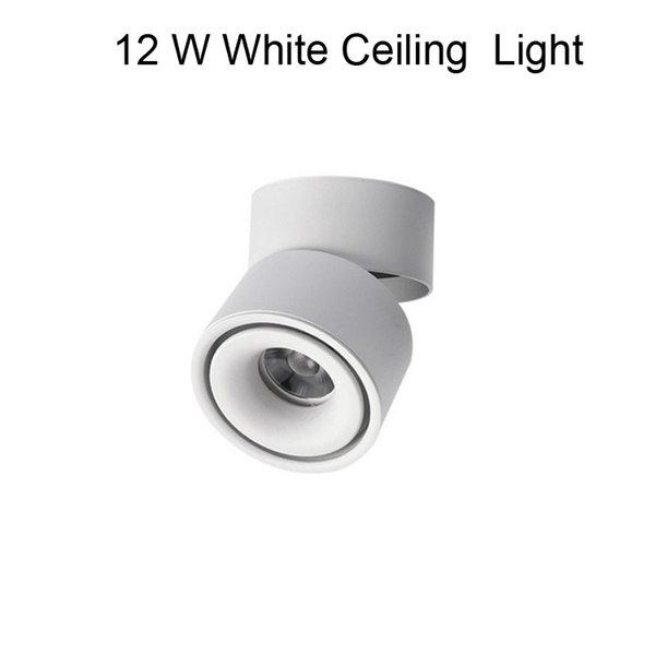 12 W Beyaz Tavan Işık