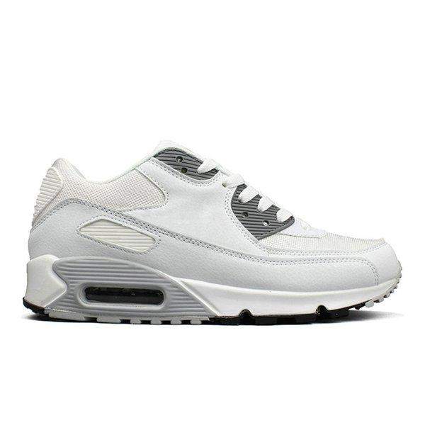 #30 White Grey 366-45