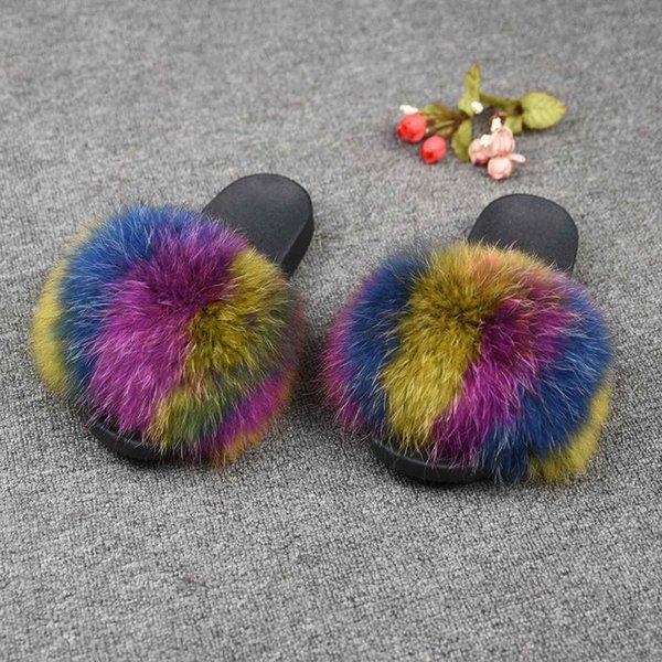 Raccoon multicolore 2