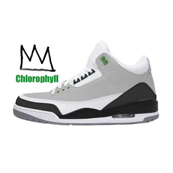 A5 chlorophyll